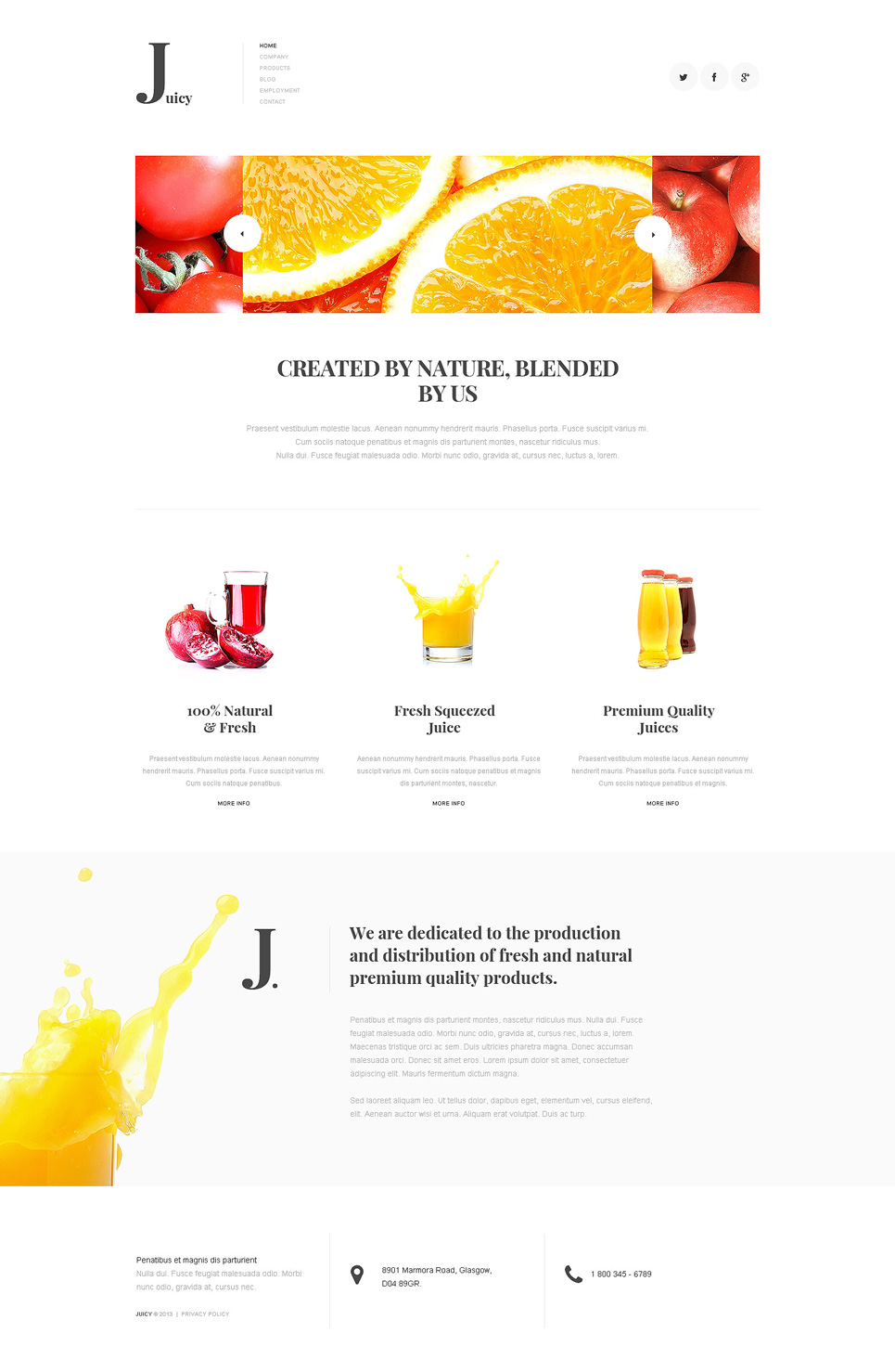 Multipurpose Juice Company Joomla Template
