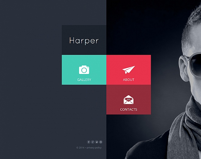 Metro Style Website Template for Photographers - image