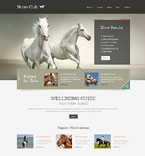 Plantillas WordPress - Plantilla nº 49010
