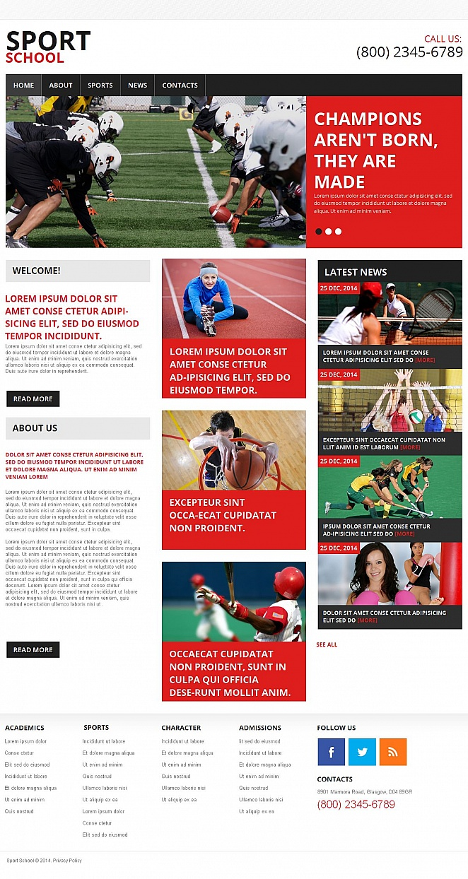 Sports Website Design with Content-rich Layout - image