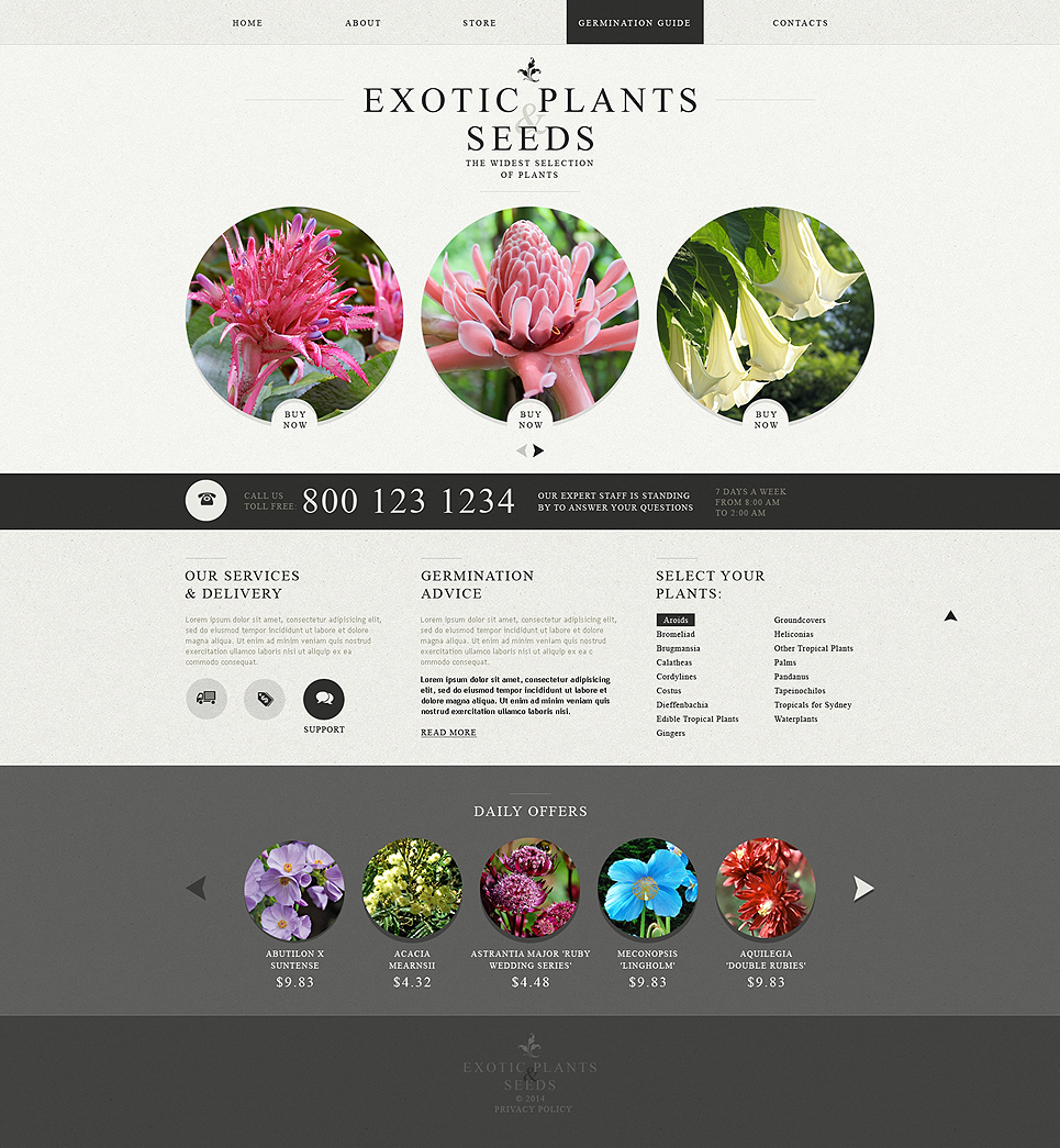 Template 49564 ensegna themes for Online exterior design services