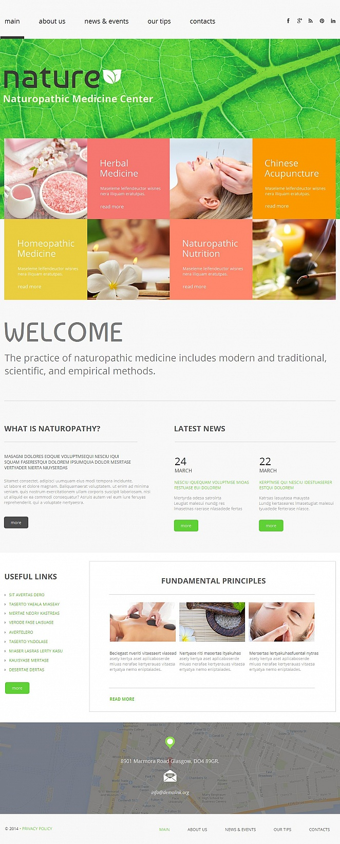 Naturopathic Medicine Website Template - image