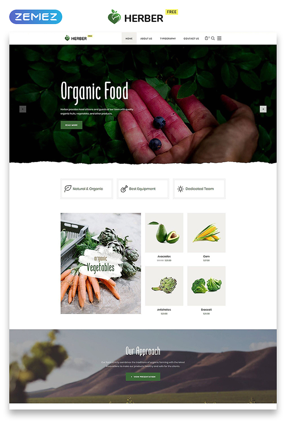 Free website template for food delivery for Food delivery