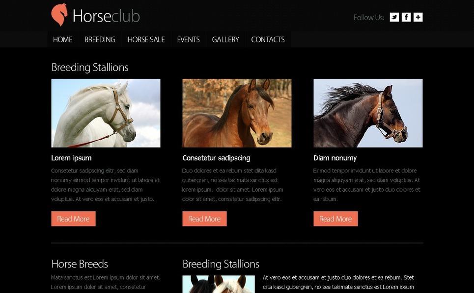 Free Website Template - Horse Club Website Template New Screenshots BIG