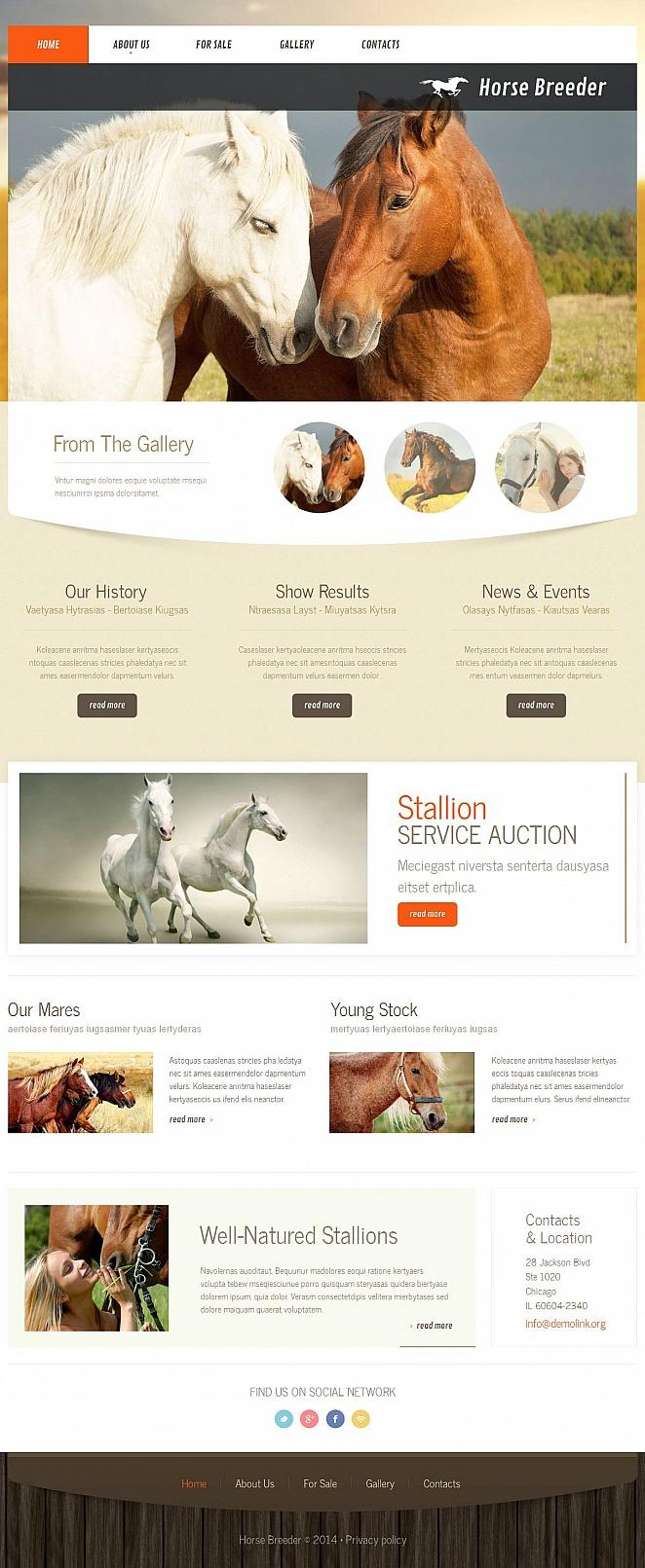 Web-Vorlage für einen Pferdezüchter - image