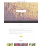 Plantillas WordPress - Plantilla nº 52173