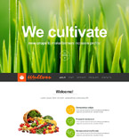 Muse Templates #52282