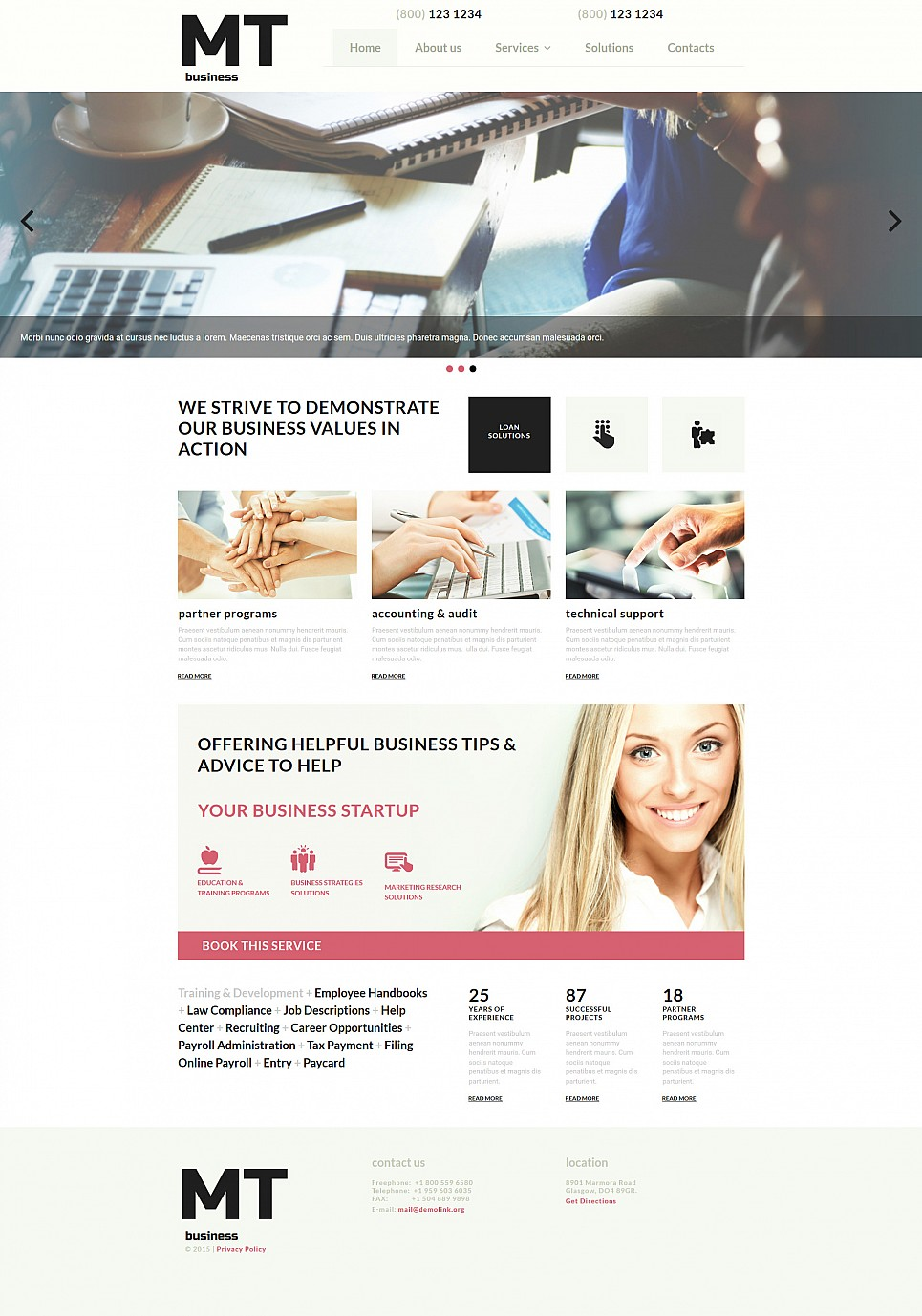 Responsive Web Theme for Business - image
