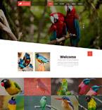 Plantillas Web - Plantilla nº 52570