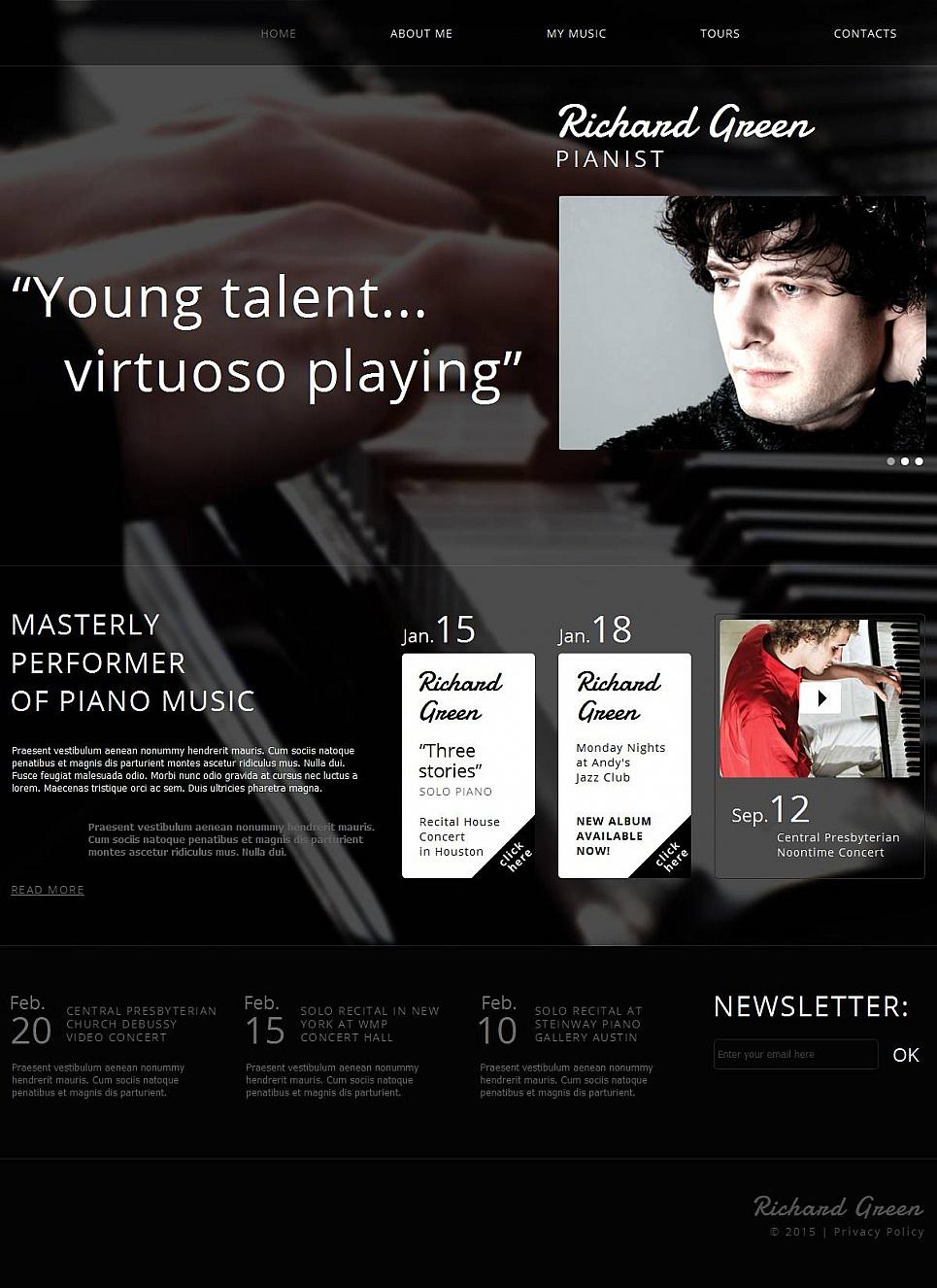 Webseite-Vorlage für einen Musiker - image