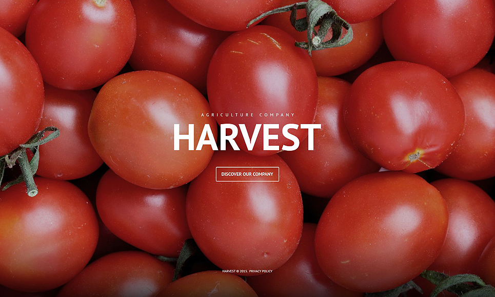 Harvest - Responsive Agriculture Company WordPress Theme