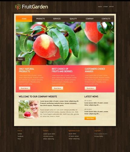 PSD макет сайта №54078