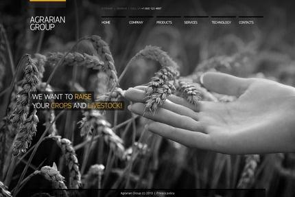PSD макет сайта №54132