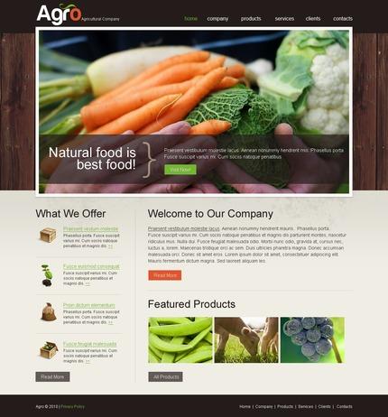 PSD макет сайта №54217