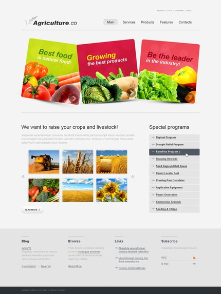 PSD макет сайта №54234