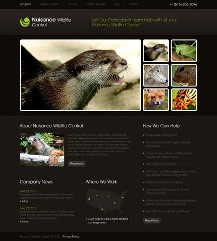 PSD макет сайта №54424