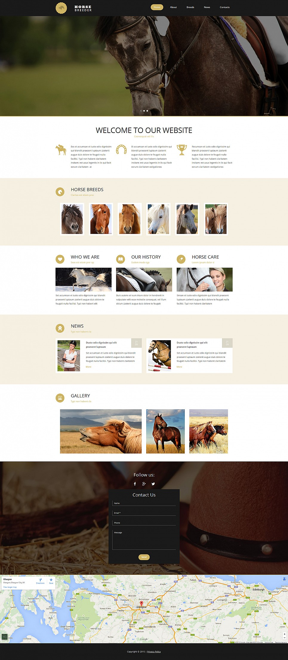 Website Template for Horse Breeding Farm - image