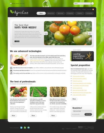 PSD макет сайта №56251