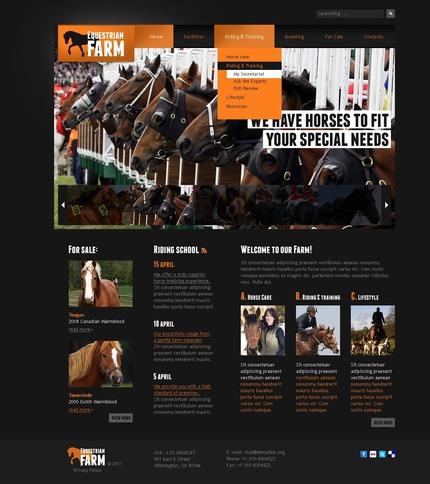 PSD макет сайта №56497