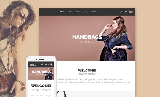 Handbags WooCommerce Theme