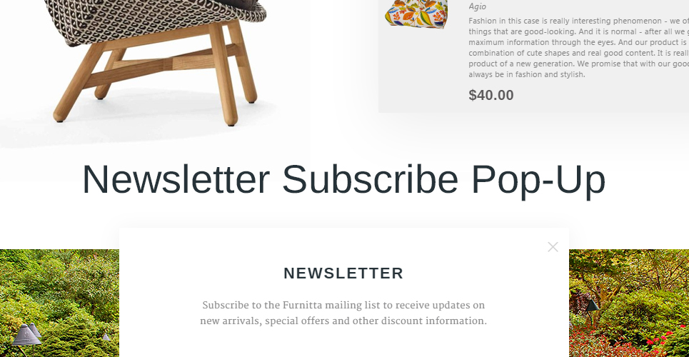 Furniture Store Prestashop Theme with option to subscribe to newsletter