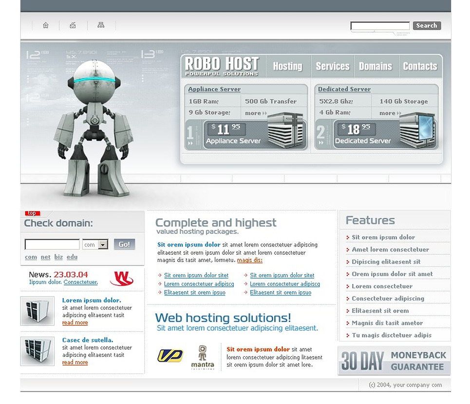 Hosting Flash Template New Screenshots BIG