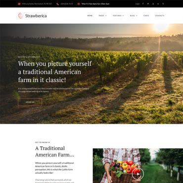 Купить  пофессиональные WordPress темы. Купить шаблон #68283 и создать сайт.