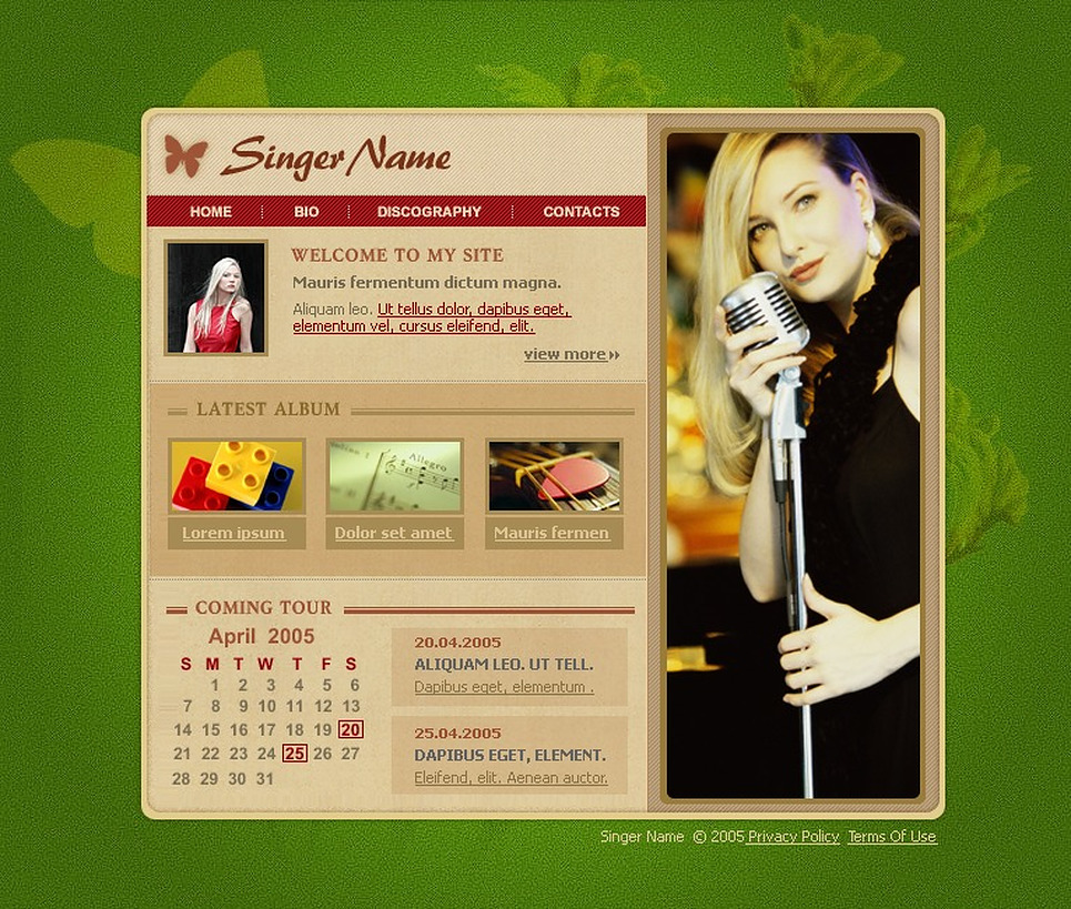 Singer Flash Template New Screenshots BIG