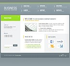 Dynamic Flash Site #9612