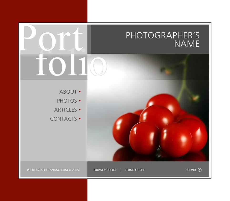 Photographer Portfolio SWiSH Template New Screenshots BIG